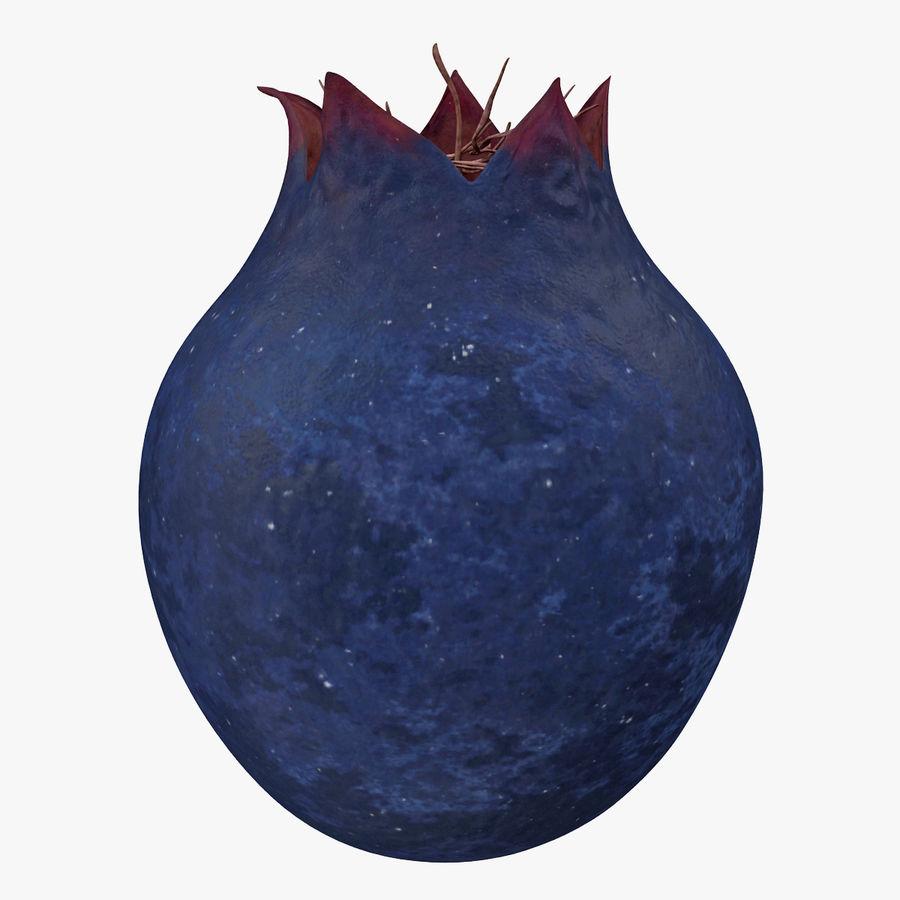 Shadbush Fruit royalty-free 3d model - Preview no. 3