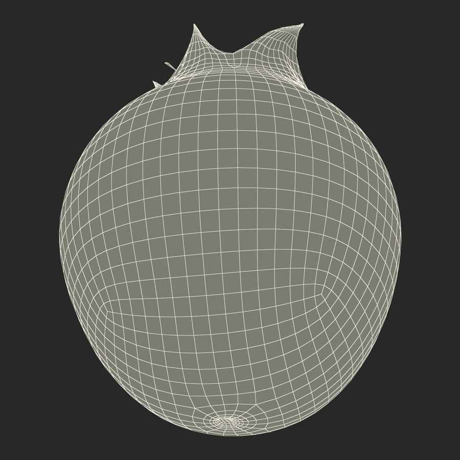 Shadbush Fruit royalty-free 3d model - Preview no. 9