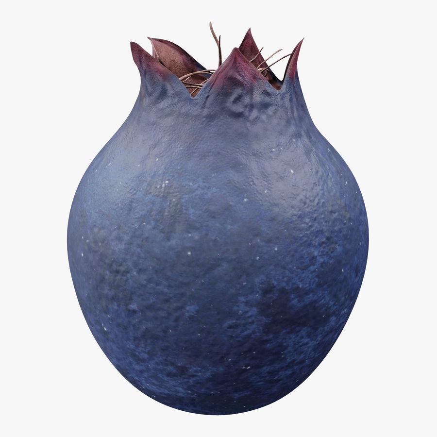 Shadbush Fruit royalty-free 3d model - Preview no. 1