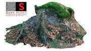 森の幹 3d model