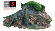 Tronco foresta 3d model