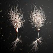 Ultra realistische gedetailleerde neuronen 3d model