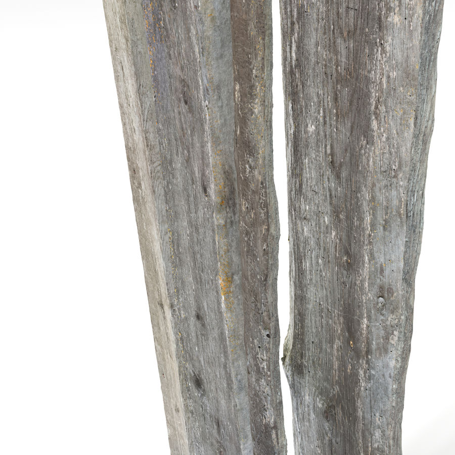 Weathered Planks royalty-free 3d model - Preview no. 15