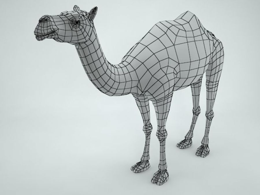 cammello royalty-free 3d model - Preview no. 11