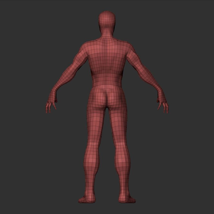 Basemesh simples royalty-free 3d model - Preview no. 24