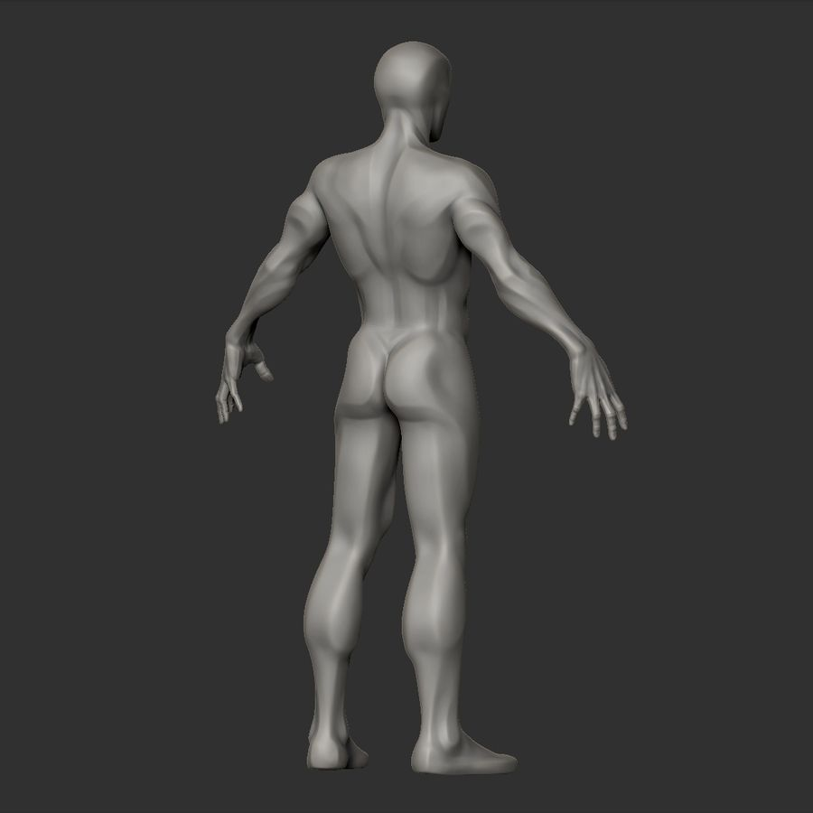 Basemesh simples royalty-free 3d model - Preview no. 9