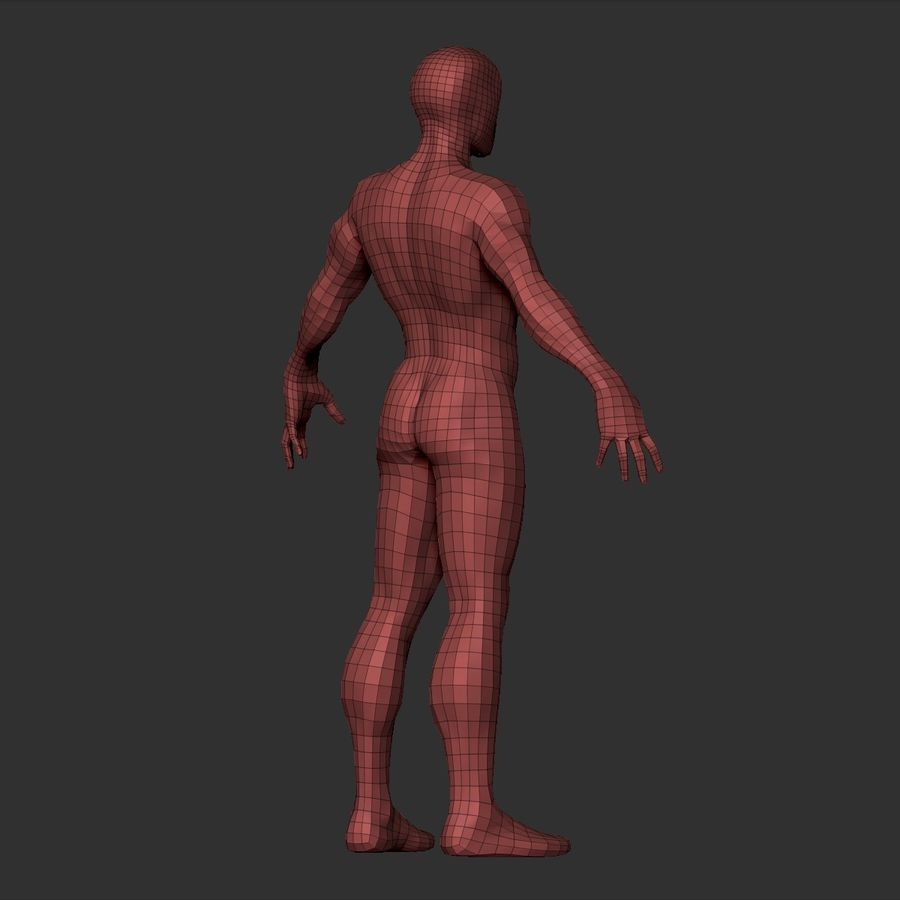 Simple Basemesh royalty-free 3d model - Preview no. 22