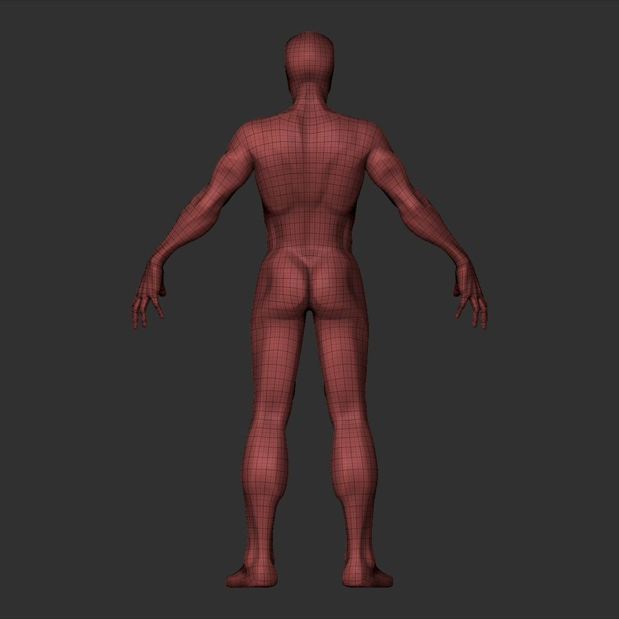 Basemesh simples royalty-free 3d model - Preview no. 25