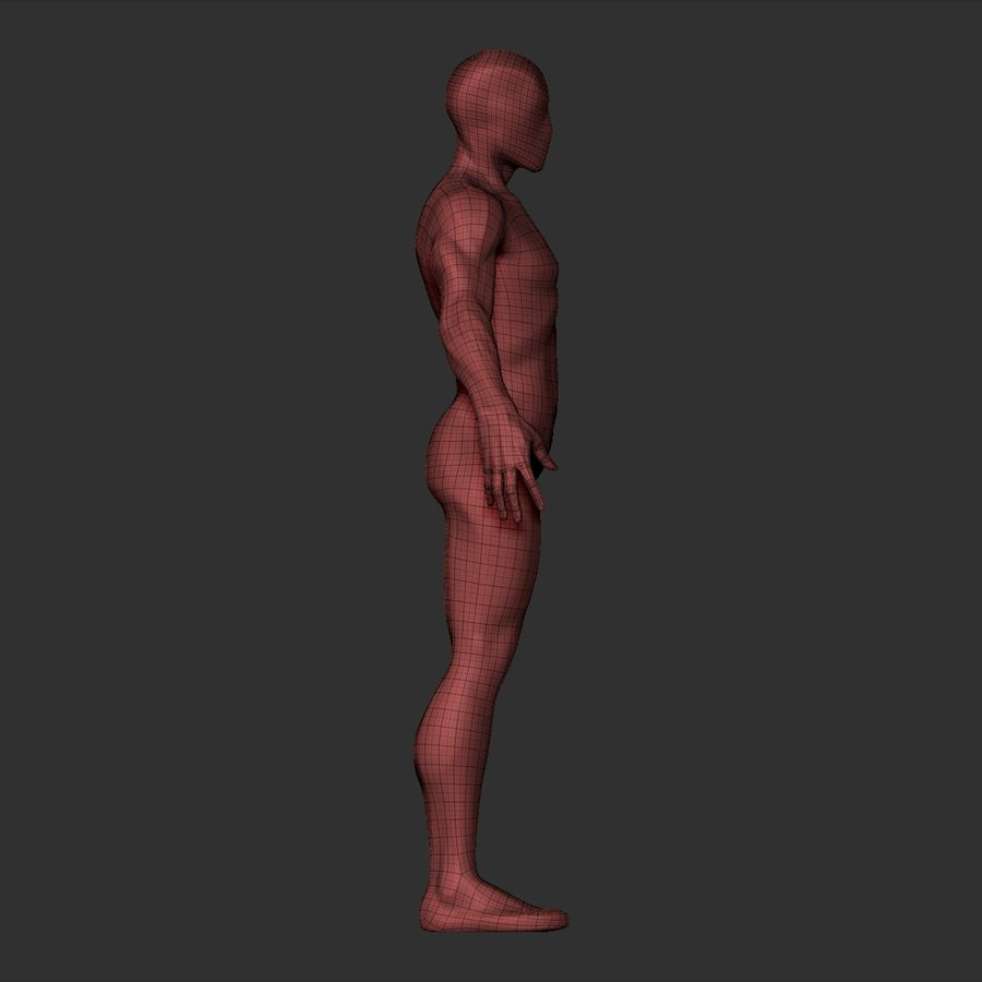 Basemesh simples royalty-free 3d model - Preview no. 21