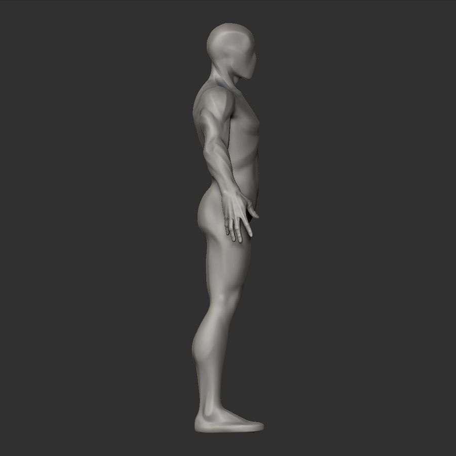 Basemesh simples royalty-free 3d model - Preview no. 8