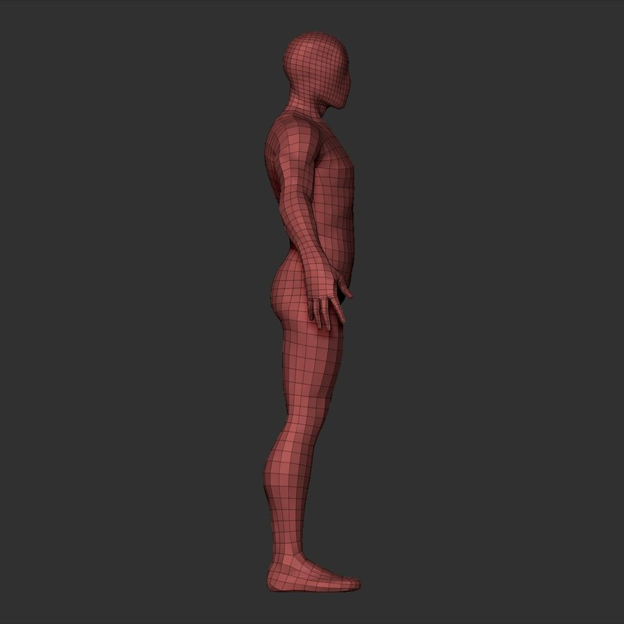 Basemesh simples royalty-free 3d model - Preview no. 20