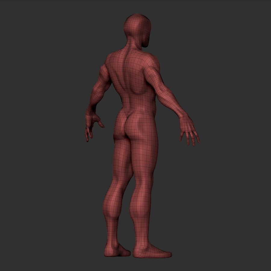 Basemesh simples royalty-free 3d model - Preview no. 23