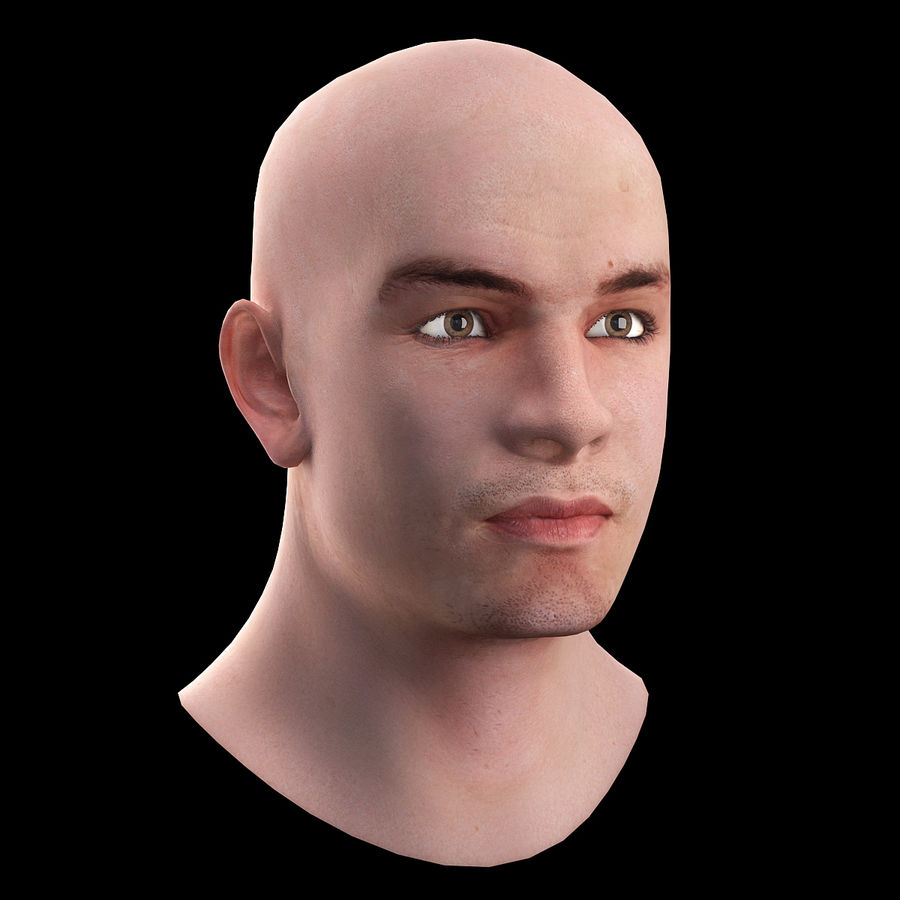 Head royalty-free 3d model - Preview no. 5