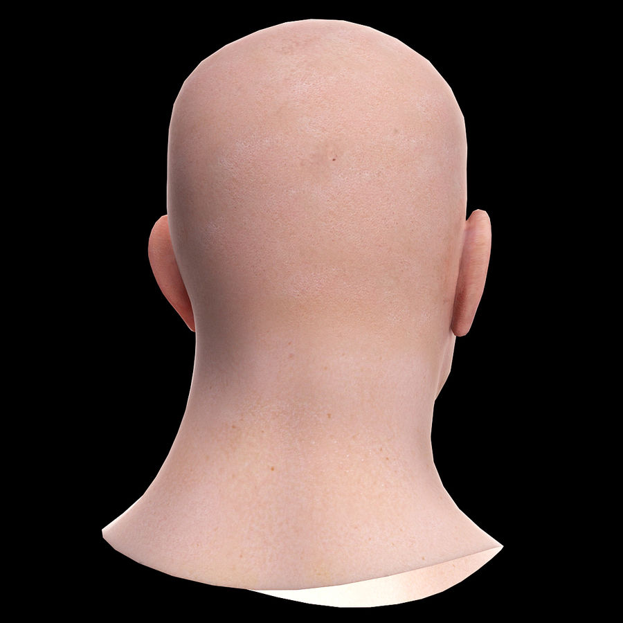 Head royalty-free 3d model - Preview no. 7