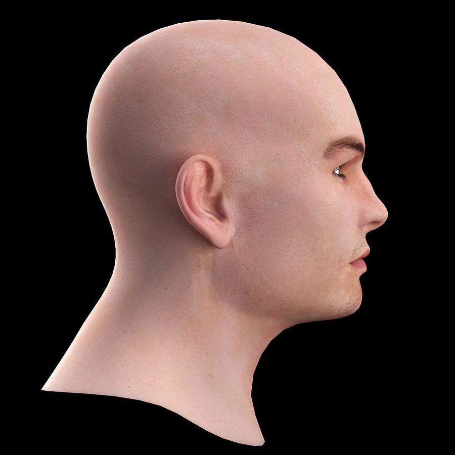 Head royalty-free 3d model - Preview no. 6