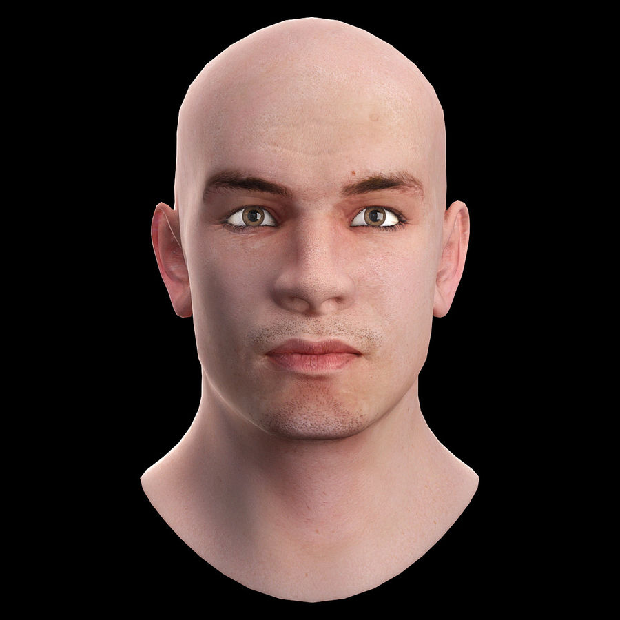 Head royalty-free 3d model - Preview no. 2