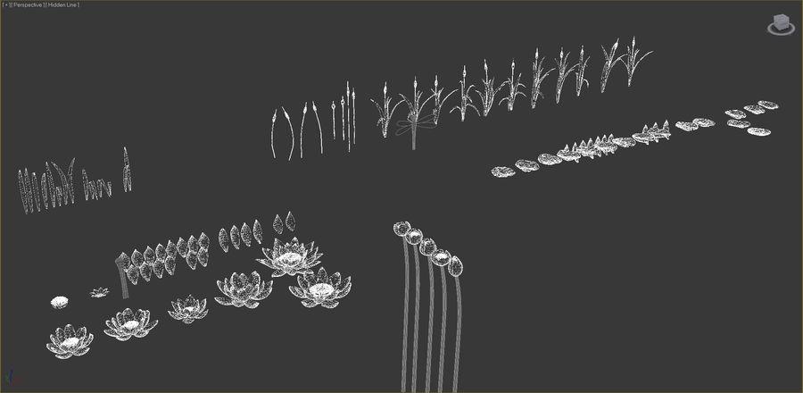 Plantes des marais royalty-free 3d model - Preview no. 9