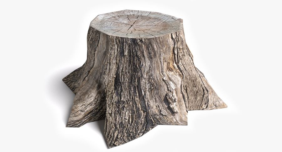Dead Tree Stump royalty-free 3d model - Preview no. 2