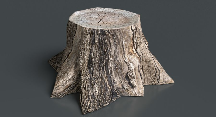 Dead Tree Stump royalty-free 3d model - Preview no. 3