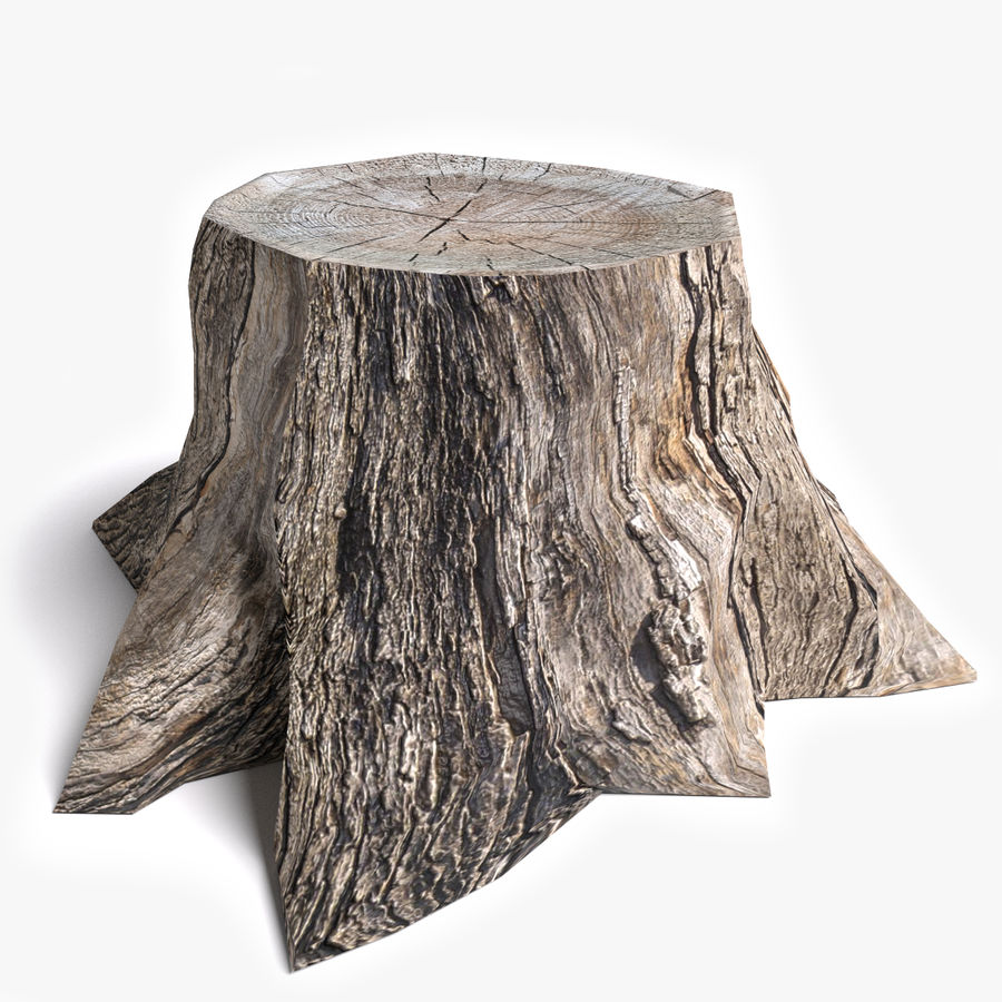Dead Tree Stump royalty-free 3d model - Preview no. 1
