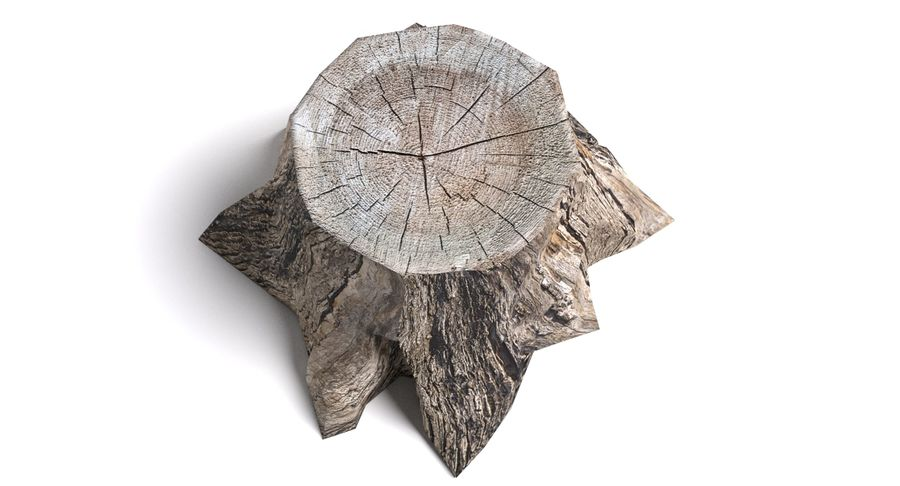 Dead Tree Stump royalty-free 3d model - Preview no. 4