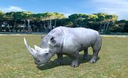 Afrikansk noshörning 3d model