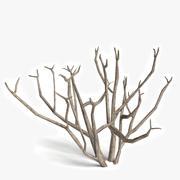 Arbusto Morto 2 3d model