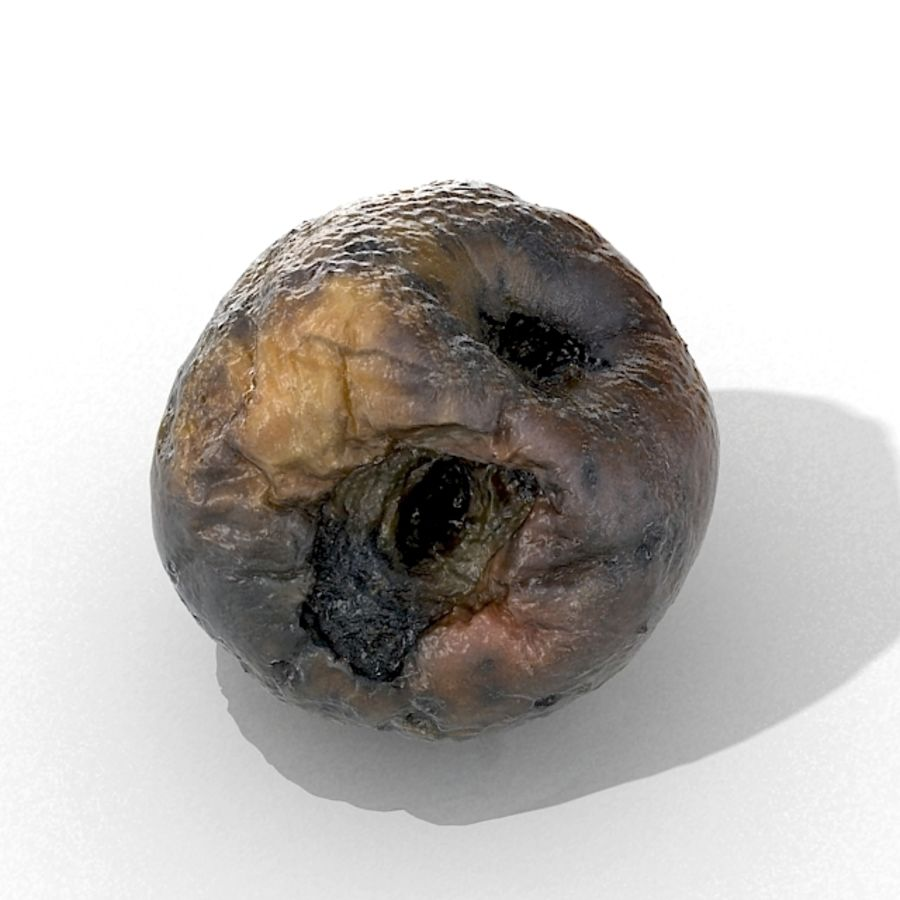 Rotte Rot Apple 2 royalty-free 3d model - Preview no. 32