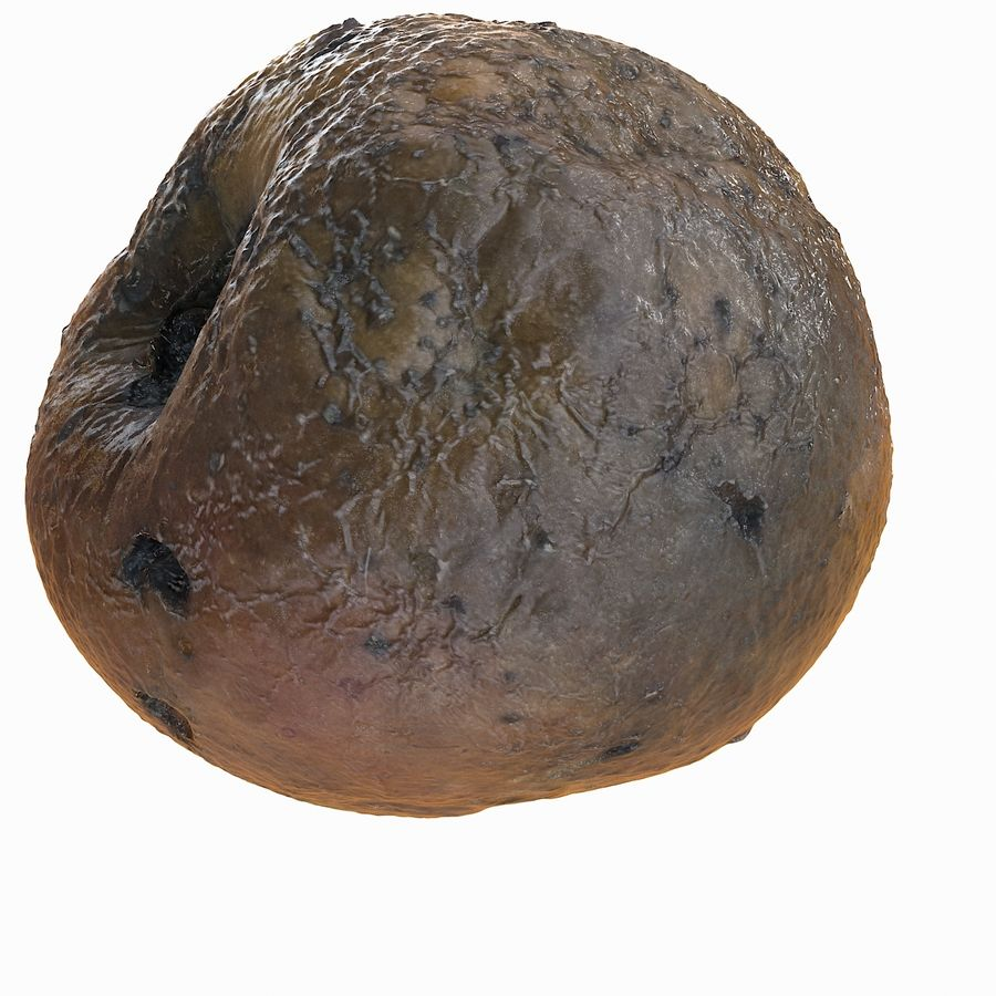 Rotte Rot Apple 2 royalty-free 3d model - Preview no. 6