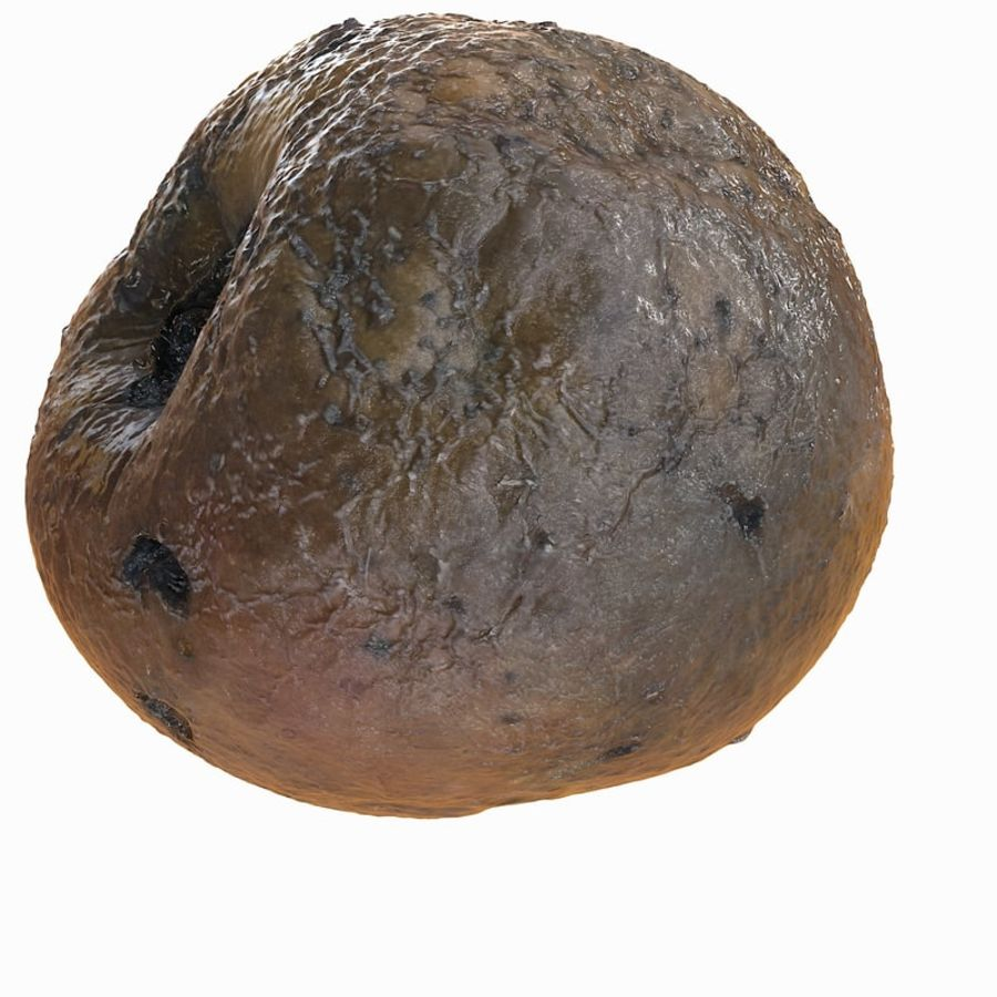 Rotte Rot Apple 2 royalty-free 3d model - Preview no. 4