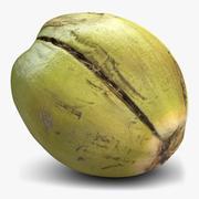 Coconut 2 Green 3d model
