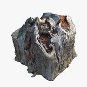 Stump01 3d model