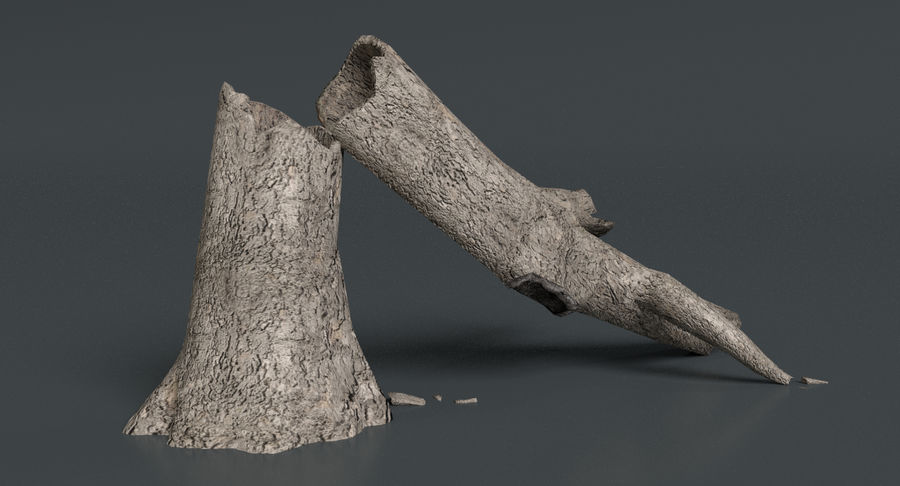 Dead Trees and Plants Collection royalty-free 3d model - Preview no. 22
