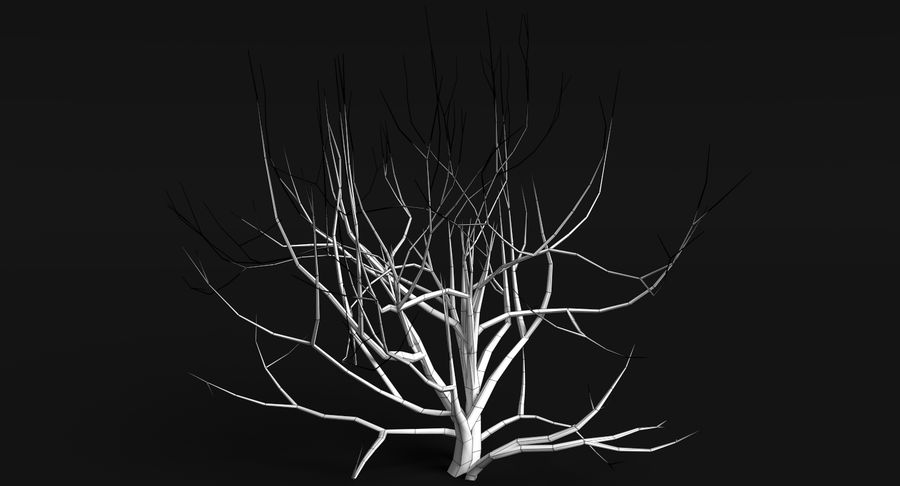 Dead Trees and Plants Collection royalty-free 3d model - Preview no. 8