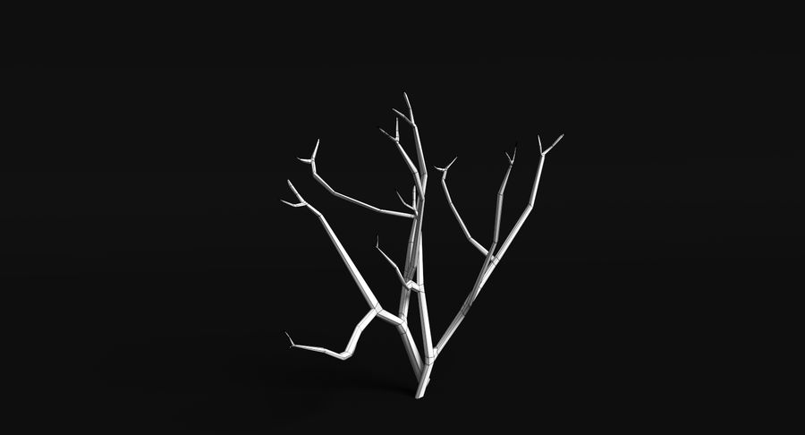 Dead Trees and Plants Collection royalty-free 3d model - Preview no. 16