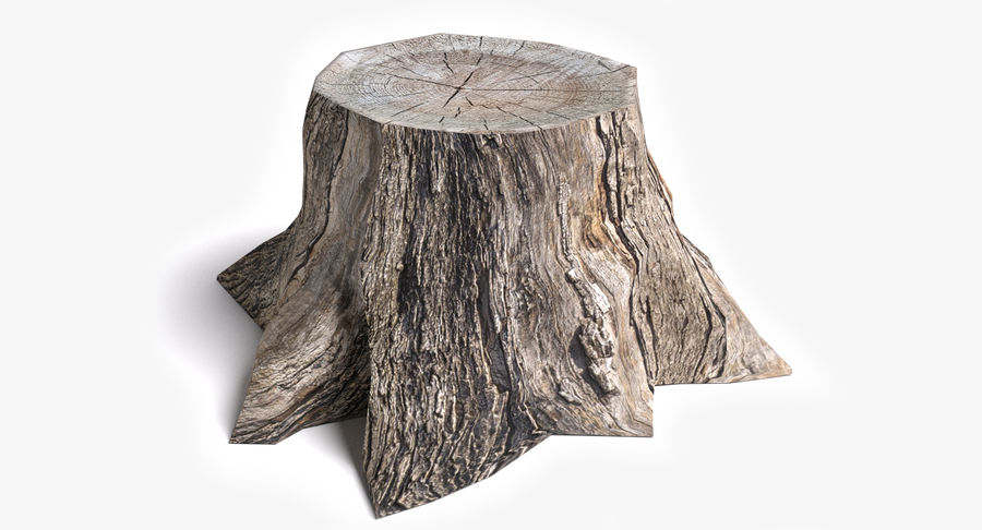 Dead Trees and Plants Collection royalty-free 3d model - Preview no. 46