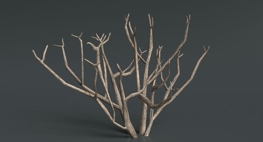 Dead Trees and Plants Collection royalty-free 3d model - Preview no. 10