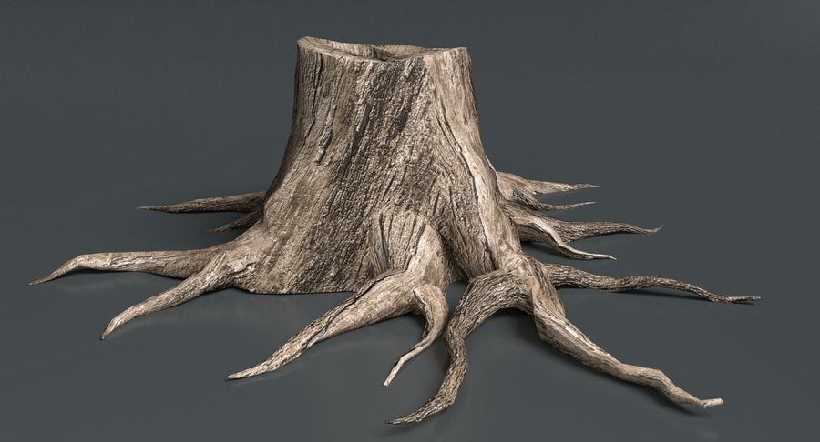 Dead Trees and Plants Collection royalty-free 3d model - Preview no. 51