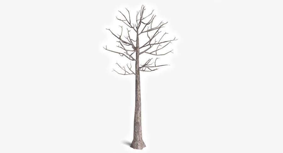 Dead Trees and Plants Collection royalty-free 3d model - Preview no. 38