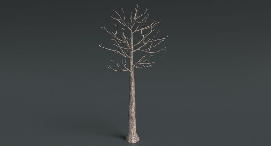 Dead Trees and Plants Collection royalty-free 3d model - Preview no. 39