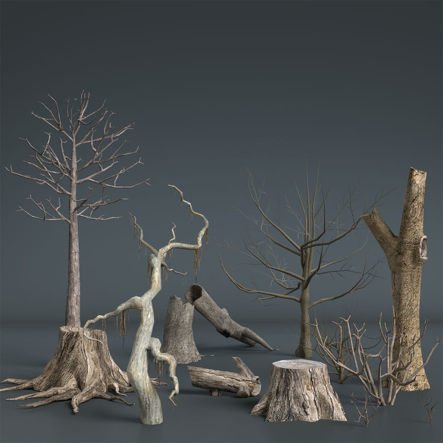 Dead Trees and Plants Collection royalty-free 3d model - Preview no. 2