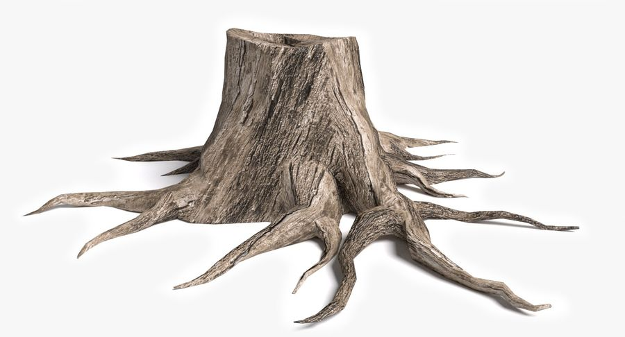 Dead Trees and Plants Collection royalty-free 3d model - Preview no. 50