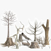 Collection d'arbres morts et de plantes 3d model