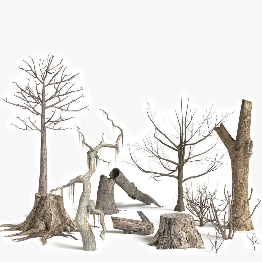 Dead Trees and Plants Collection royalty-free 3d model - Preview no. 1