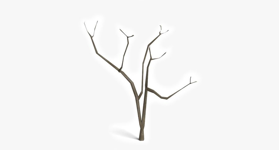 Dead Trees and Plants Collection royalty-free 3d model - Preview no. 17