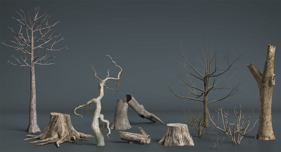 Dead Trees and Plants Collection royalty-free 3d model - Preview no. 4