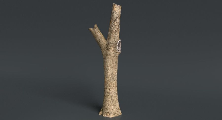Dead Trees and Plants Collection royalty-free 3d model - Preview no. 43