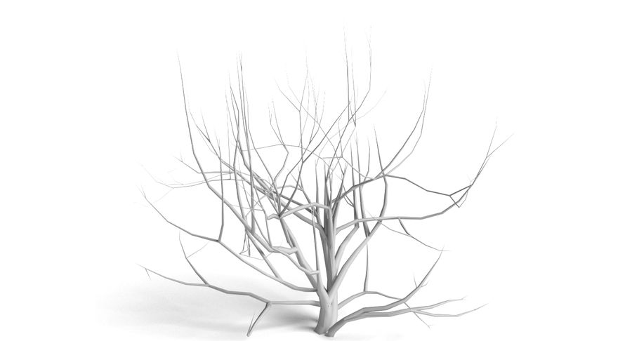 Dead Trees and Plants Collection royalty-free 3d model - Preview no. 7