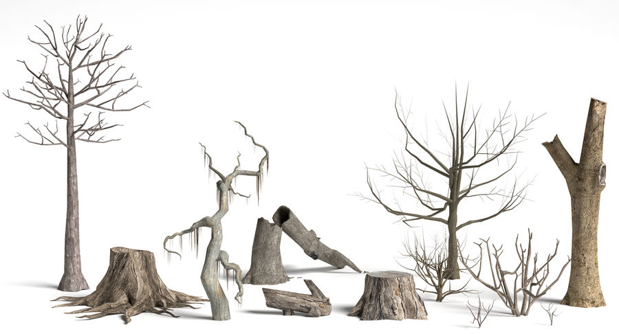 Dead Trees and Plants Collection royalty-free 3d model - Preview no. 3