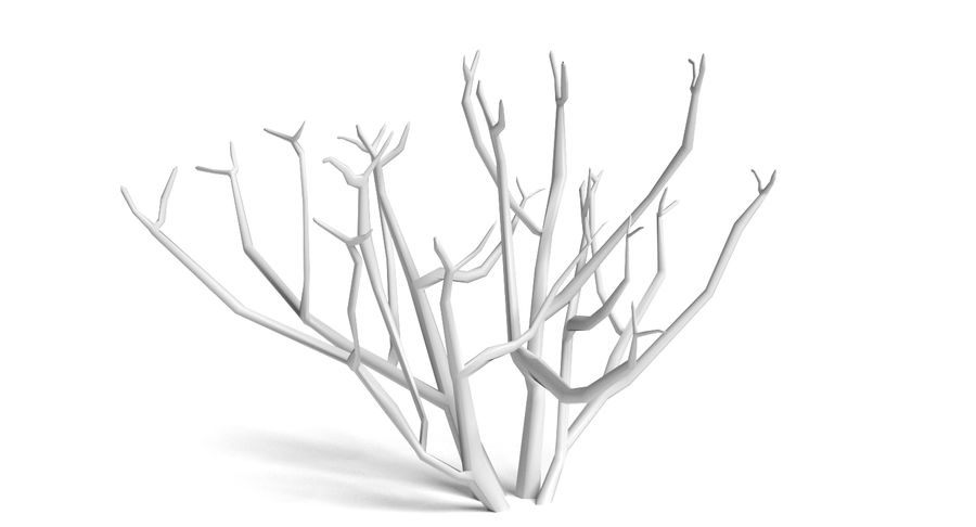 Dead Trees and Plants Collection royalty-free 3d model - Preview no. 11